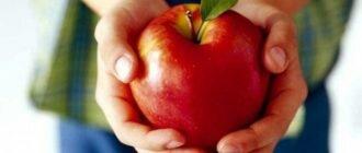 Яблоки, польза и вред для здоровья взрослого человека